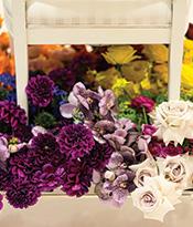 The Gallery at 200 Lex_Barry Lantz_Flowers Thumbnail