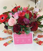 Love 200 Lex_Flowers Thumbnail